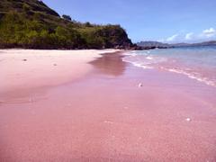 【コモド島】PINK BEACH_2