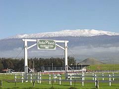 【パーカー牧場】全米有数の広さを誇るパーカー牧場