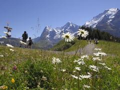 【ブルーメンタール(花の谷)】ハイキングコースの途中からも絶景が楽しめる