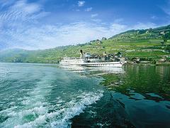 【ラヴォー地区のブドウ畑】湖上を行く船からブドウ畑を眺めるのもいい