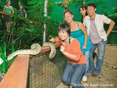 【コアラ・ガーデンズ】ヘビに触ってみよう