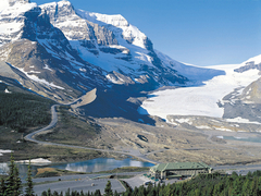 【コロンビア大氷原】山間から流れ出るアサバスカ氷河