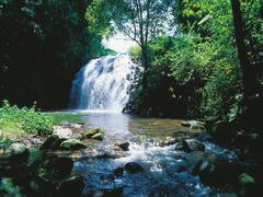 【ミラミラの滝】水着を持って出かけよう