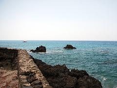 【ケアラケクア湾】イルカが集まる湾としても知られる