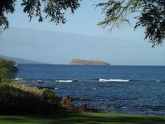 【モロキニ島】海に入るだけで魚に囲まれるというシュノーケリングの好スポット