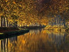 【ミディ運河】紅葉が美しい秋の運河