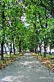 元老院広場(旧デカブリスト広場)