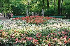 【夏の庭園】緑の中に白い彫像が立ち並ぶ
