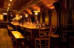 【ヴィヌム】ワインセラーの雰囲気で食事を楽しもう