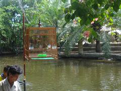 【プーケット動物園】園内にある池