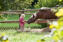 【フォークト・バウアンホーフ野外博物館】馬などの動物とも触れ合える