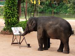【タイ象保護センター】象のアートワークは一度は観ておきたい