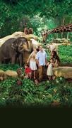 【シンガポール動物園】シンガポール動物園