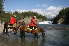 【ボウ滝】警察騎馬隊の馬が水を飲んでいる