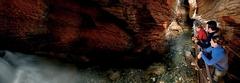 【土蛍の洞窟】土ボタルの生態を観察