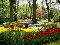 【キューケンホフ公園】世界中からの観光客を魅了して止まないキューケンホフ公園