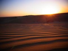 【キャメルサファリ】夕日に染まる美しい砂丘