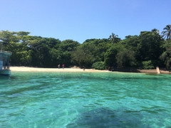 【グリーン島】島の内陸は熱帯雨林が生い茂る