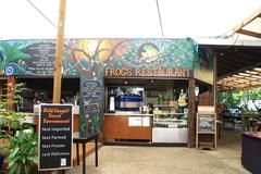 【フロッグス】熱帯雨林にいるような雰囲気の中で食事ができる