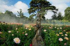 【ブレナム・パレス】バラが咲き誇る見事な庭園