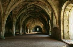 【ファウンティンズ修道院遺跡群を含むスタッドリー王立公園】ファウンティンズ修道院内観
