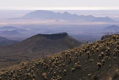 【ピナカテ火山とアルタル大砂漠生物圏保存地域】風景