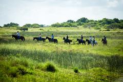 【イシマンガリソ湿地公園】馬に乗って湿地を散策することもできる