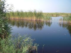 フェルテー湖/ノイジードラー湖の文化的景観