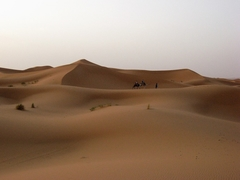 メルズーガ砂丘