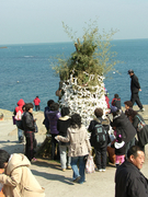 【海東龍宮寺(カイトウリュウグウジ)】海岸での祭事