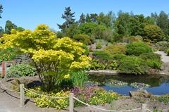 【王立植物園】春のロックガーデン