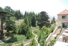 カディーシャ渓谷(聖なる谷)と神のスギの森(ホルシュ・アルツ・エル-ラーブ)