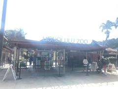 【ホノルル動物園】ホノルルズーのシマウマ
