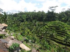 【トゥガララン】バリ島に点在する美しいライステラスのひとつ