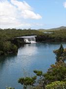 【マドレーヌの滝】マドレーヌの滝の周辺は湿地帯